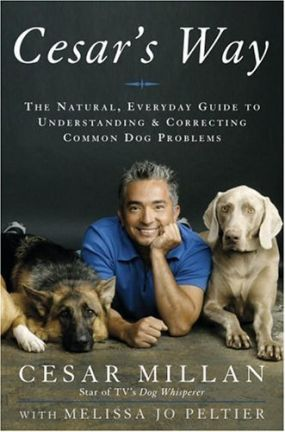 Cesar Dog Training Book