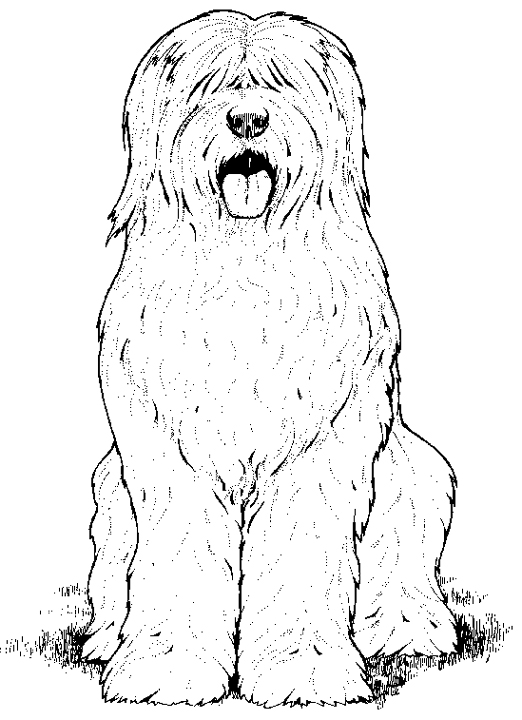 OES Coloring Page