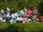 SHEEP DOG PICNIC 023.jpg